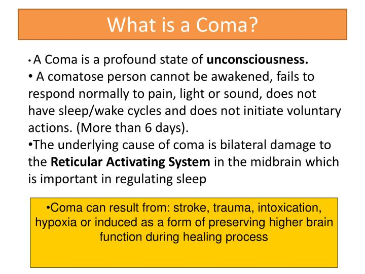 What is a Coma?