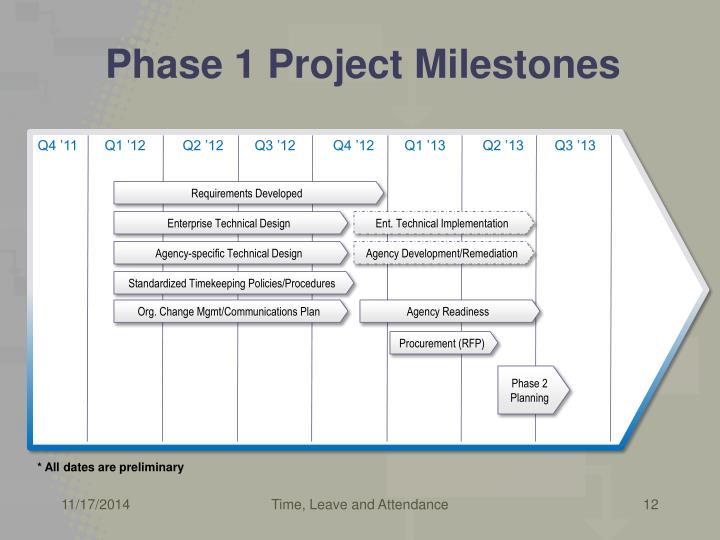 Phase 1 Project Milestones