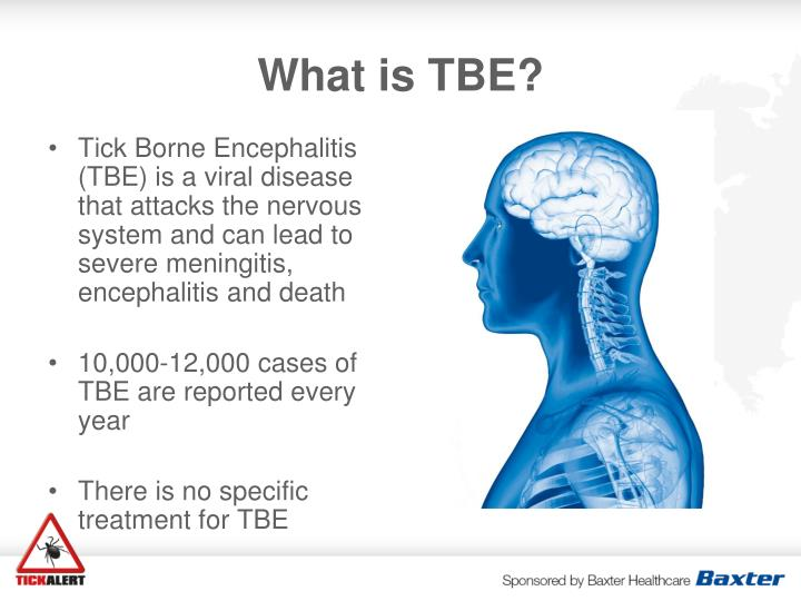 What is TBE?