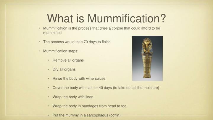 What is Mummification?