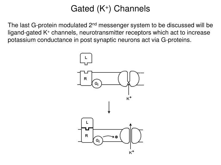 Gated (K