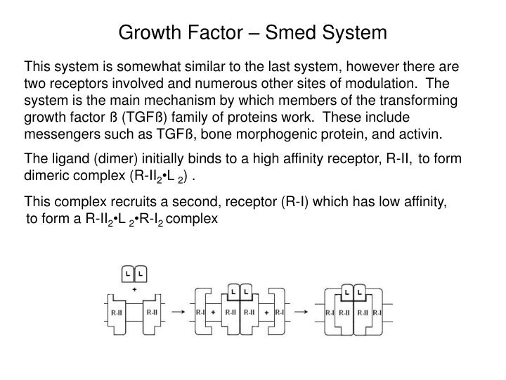 Growth Factor – Smed System