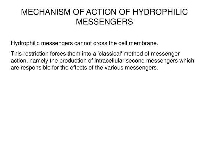 MECHANISM OF ACTION OF HYDROPHILIC MESSENGERS
