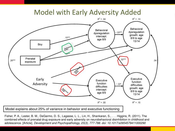 Model with Early Adversity Added