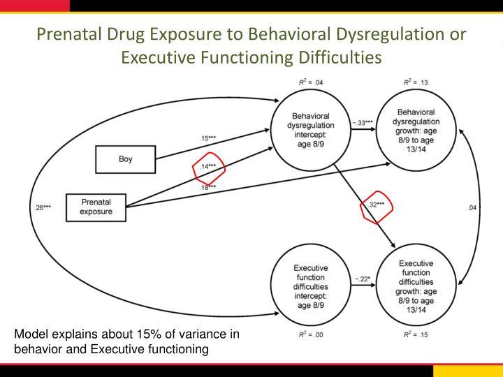 Prenatal Drug Exposure to Behavioral