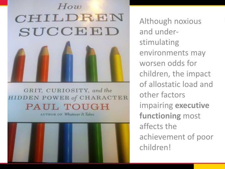 Although noxious and under-stimulating environments may worsen odds for children, the impact of
