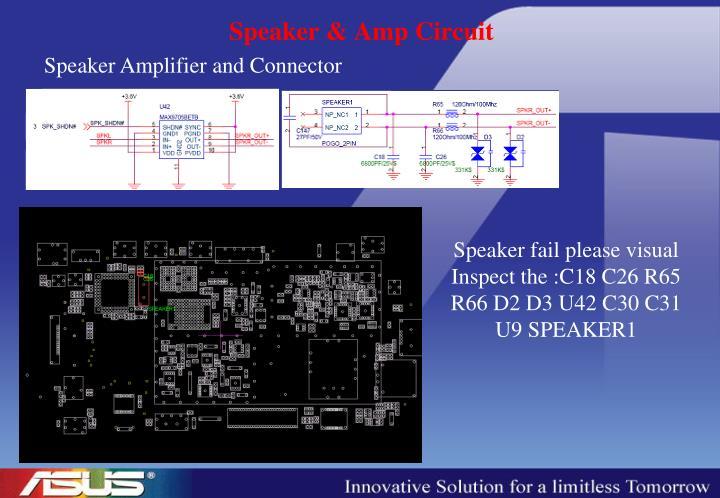 Speaker & Amp Circuit