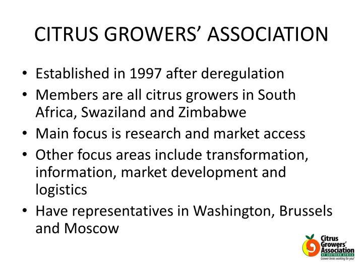CITRUS GROWERS' ASSOCIATION