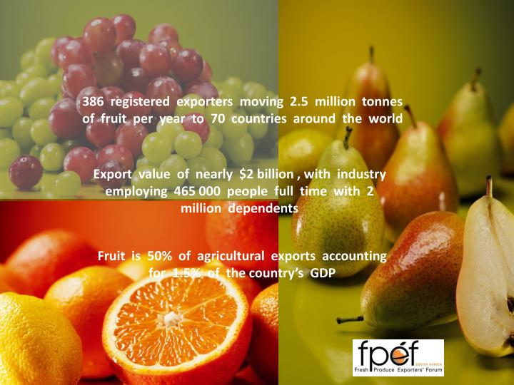 386  registered  exporters  moving  2.5  million  tonnes  of  fruit  per  year  to  70  countries  around  the  world