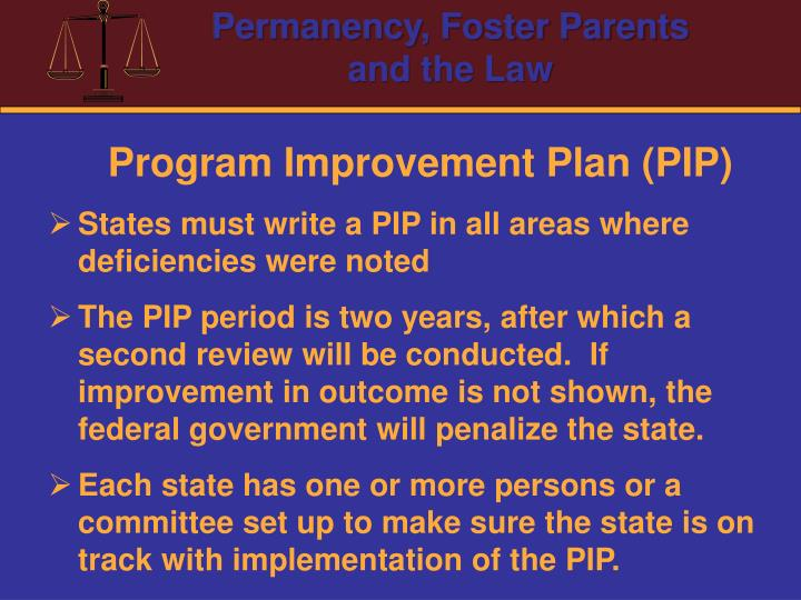 Program Improvement Plan (PIP)