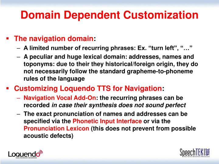 Domain Dependent Customization