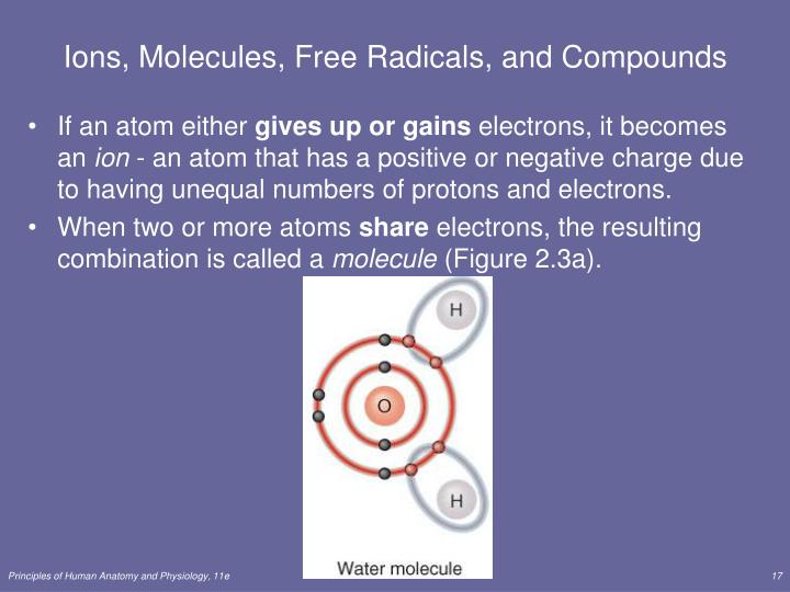 Ions, Molecules, Free Radicals, and Compounds