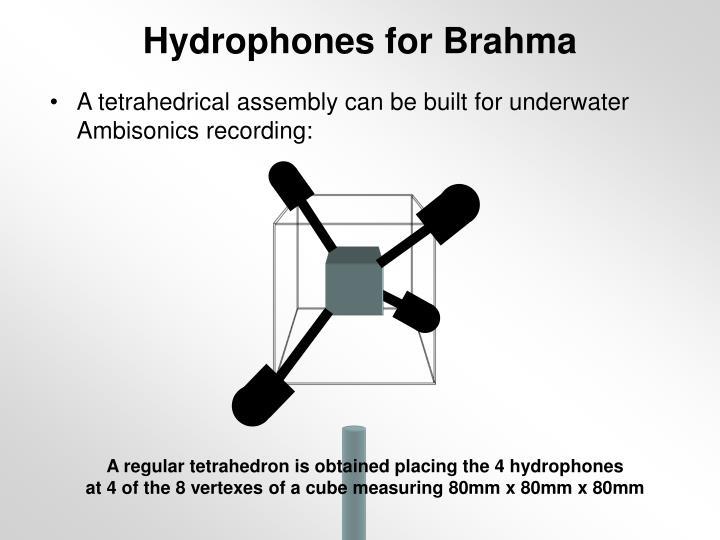Hydrophones for Brahma