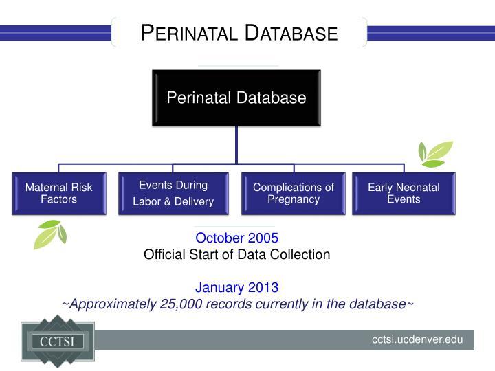 Perinatal Database