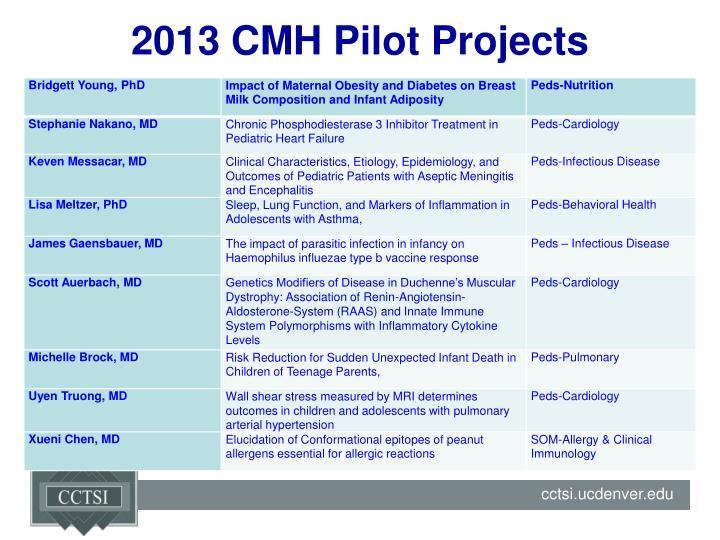 2013 CMH Pilot Projects