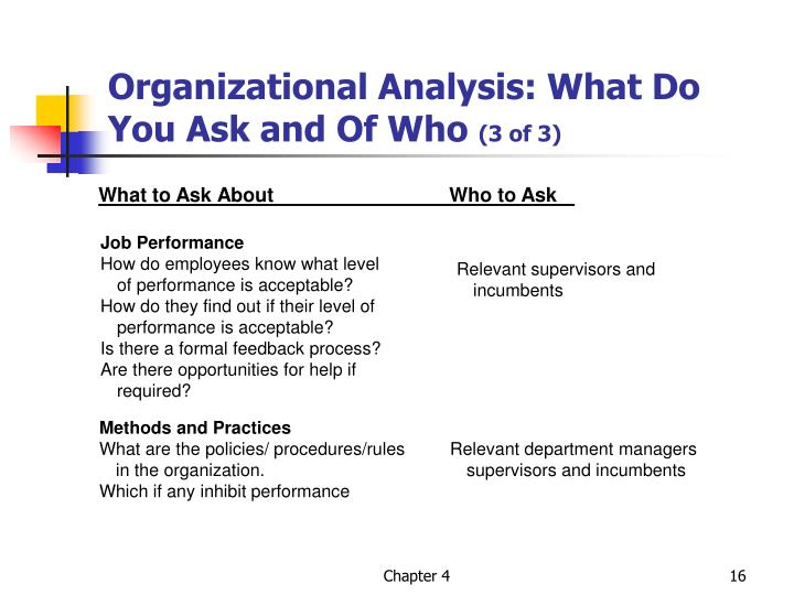 Organizational Analysis: What Do You Ask and Of Who