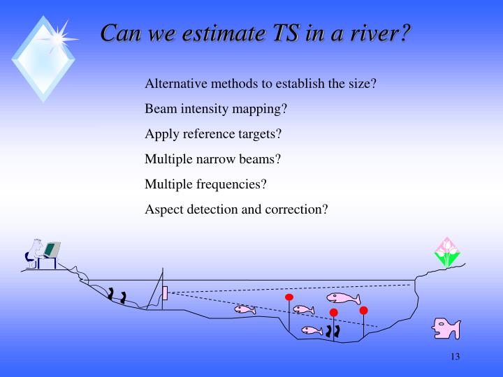 Can we estimate TS in a river?