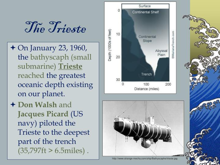 The Trieste