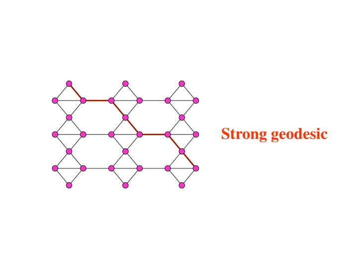 Strong geodesic
