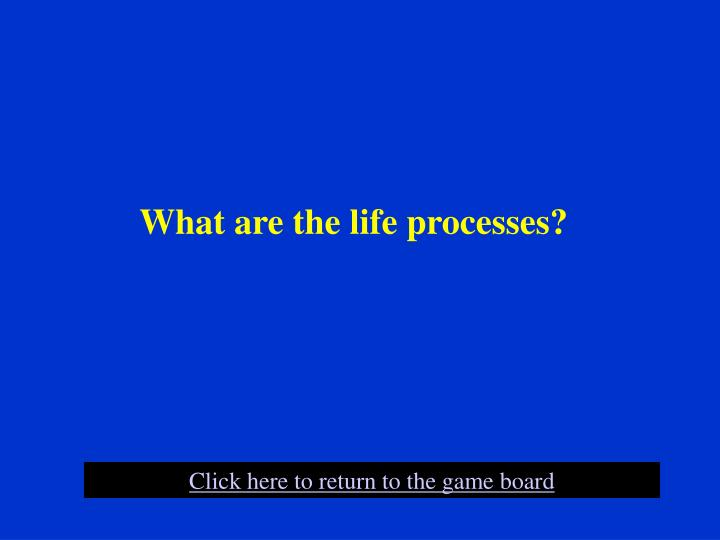 What are the life processes?