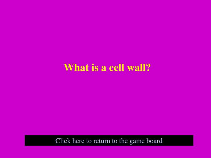 What is a cell wall?