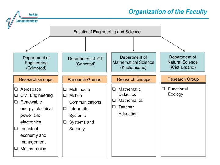 Organization of the Faculty