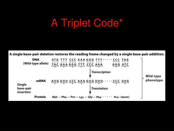A Triplet Code*