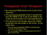 polypeptide chain elongation