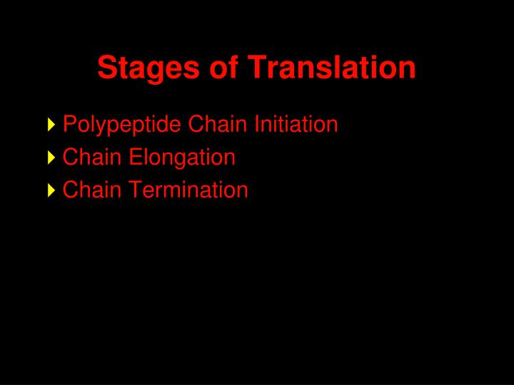 Stages of Translation