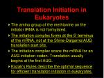 translation initiation in eukaryotes