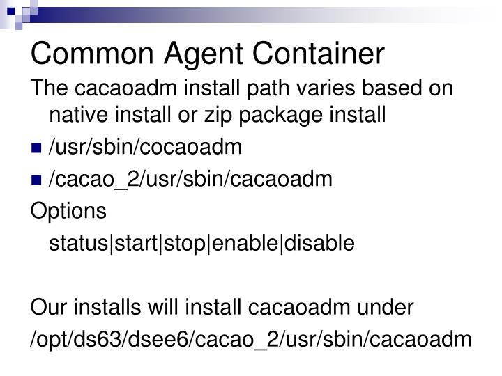 Common Agent Container