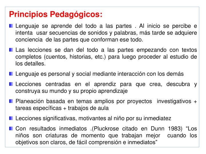 Principios Pedagógicos: