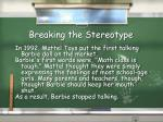 breaking the stereotype