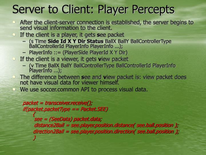 Server to Client: Player Percepts