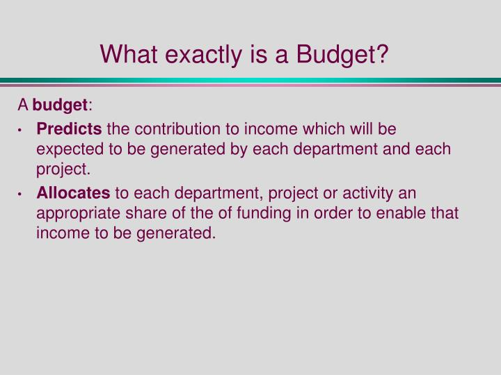 What exactly is a Budget?