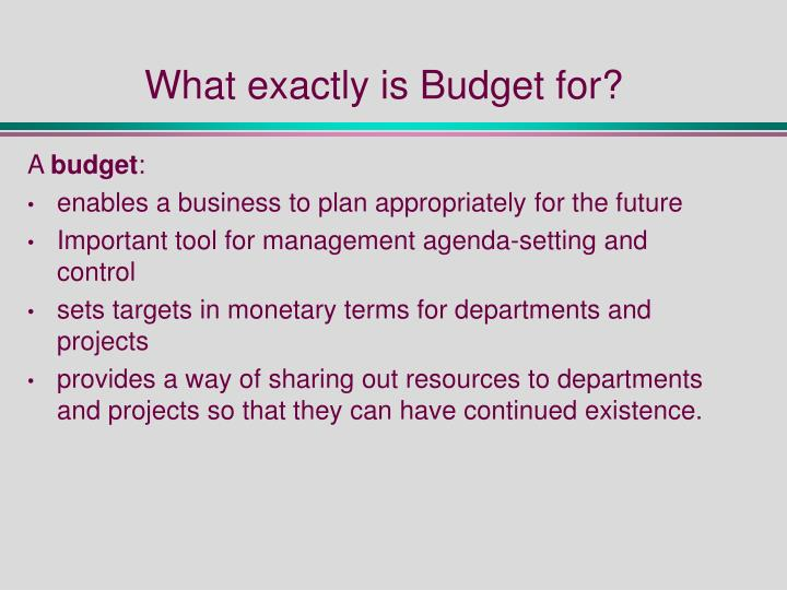 What exactly is Budget for?