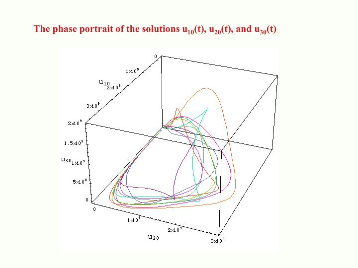 The phase portrait of the solutions u