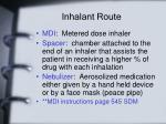 inhalant route