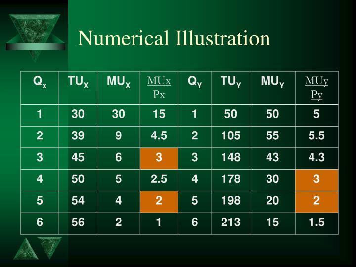 Numerical Illustration