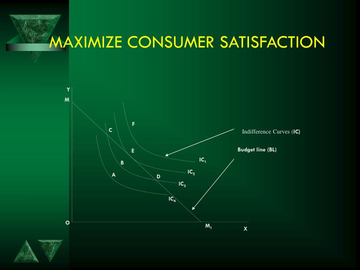 MAXIMIZE CONSUMER SATISFACTION