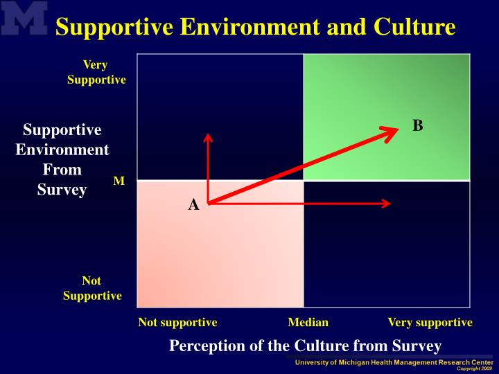 Supportive Environment and Culture