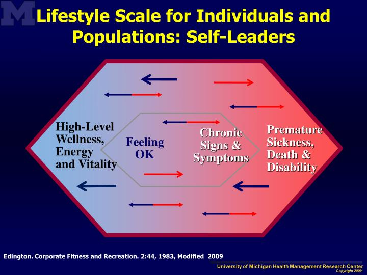 Lifestyle Scale for Individuals and Populations: Self-Leaders