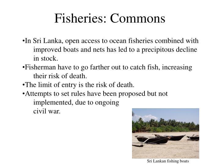 Fisheries: Commons