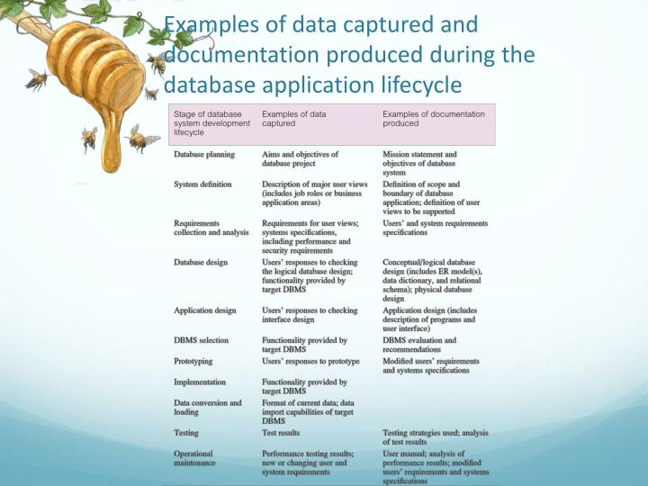 Examples of data captured and documentation produced during the database application lifecycle