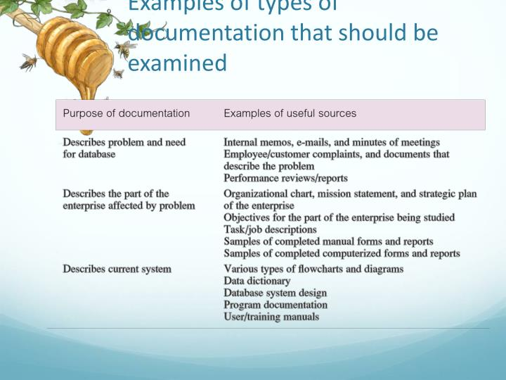 Examples of types of documentation that should be examined