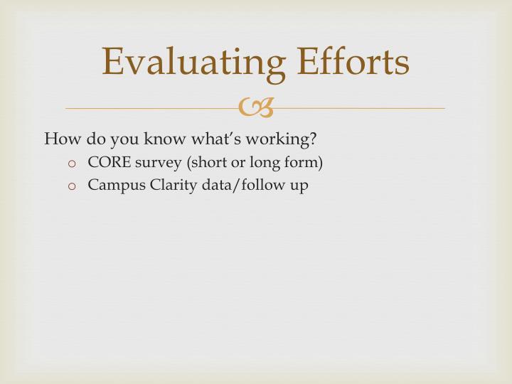 Evaluating Efforts