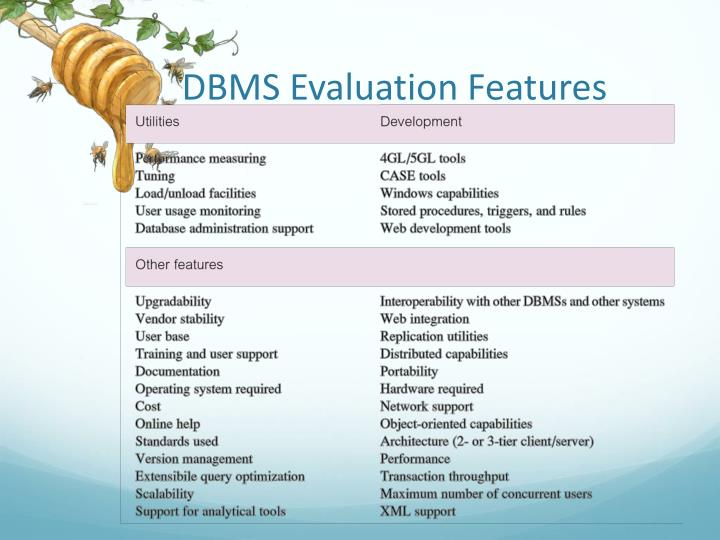 DBMS Evaluation Features