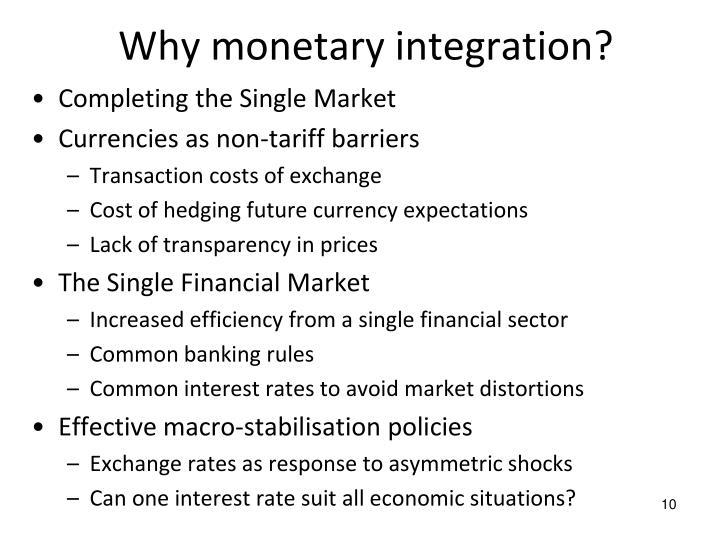 Why monetary integration?
