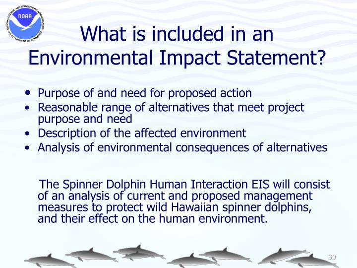 What is included in an Environmental Impact Statement?