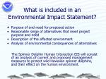 what is included in an environmental impact statement